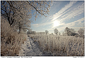 Winter in Northern Germany - Winter in Northern Germany